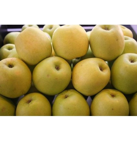 MANZANA GOLDEN 500gr