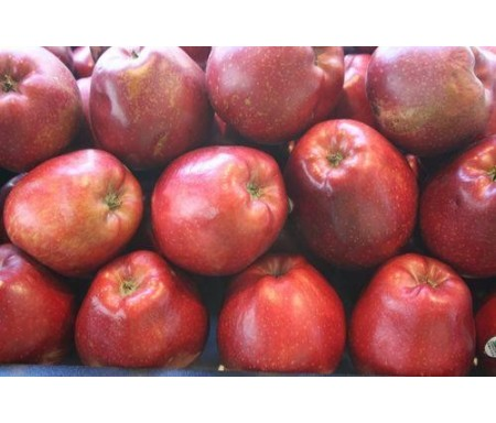 MANZANA RED CHIEF 500gr